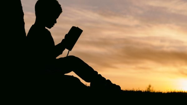 Child reading the Bible at sunset leaning against a tree